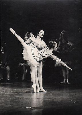 Rudolf Nureyev   Nureyev, Rudolf nureyev, Male ballet dancers
