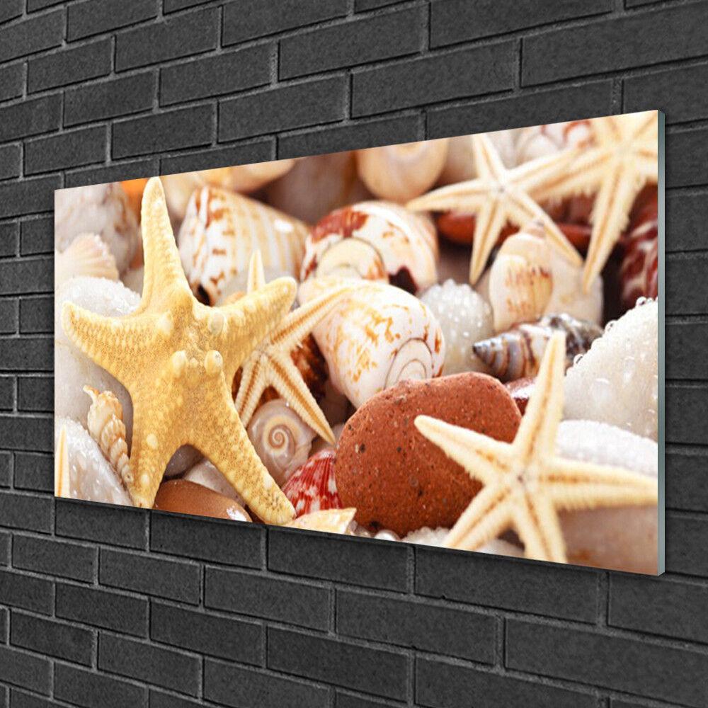 Tableau sur verre Image Impression 100x50 Art Coquilles étoile De Mer