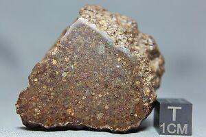 NWA-10496-LL3-Chondrite-Meteorite-106-gram-main-mass