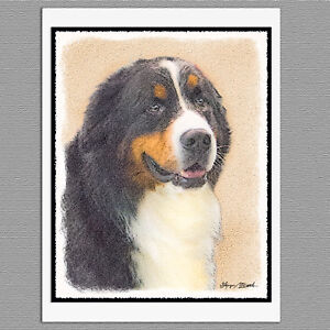 Details About 6 Bernese Mountain Dog Blank Art Note Greeting Cards