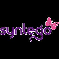 Syntego Limited