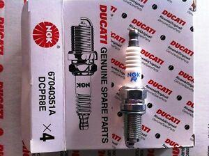 Ducati Monster Hypermotard Spark Plug NGK - ducati Hypermotard