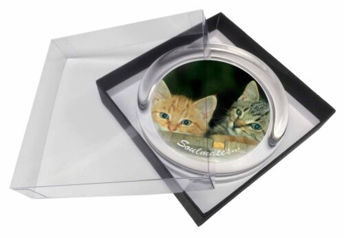 'Soulmates' Kittens in Beer Barrel Glass Paperweight in Gift Box Chri, SOUL14PW