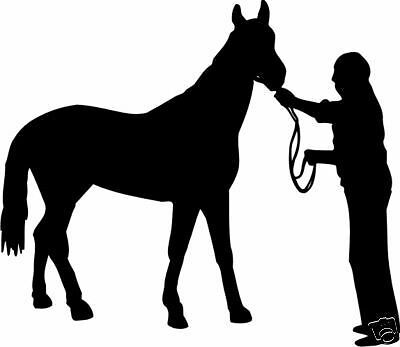 HORSE STICKER DECAL FOR CAR,UTE,4WD,HORSE FLOAT, WINDOW