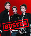 Busted : The Official Book by Peter Robinson (Hardback, 2003)