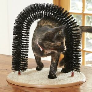 Cat Arch Scratcher Self Groomer Playtime Toy Bristle Massager Catnip Compartment