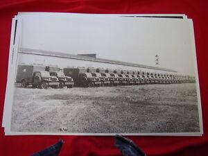DODGE-POWER-WAGON-FLEET-ARMY-TRUCKS-11-X-17-PHOTO-PICTURE