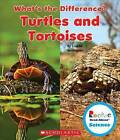 Turtles and Tortoises by Lisa M Herrington (Hardback, 2015)