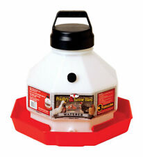 Little Giant Ppf3 Heavy Duty Translucent Plastic Chicken Poultry Waterer 3 Gal