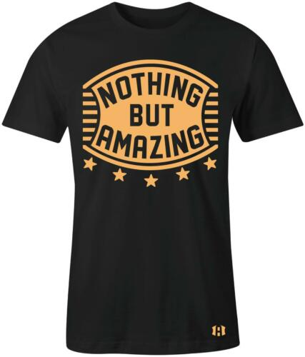 """Nothing But Amazing Stripped Shield T-SHIRT to Match Air Retro 13 Low /""""Chutney/"""""""