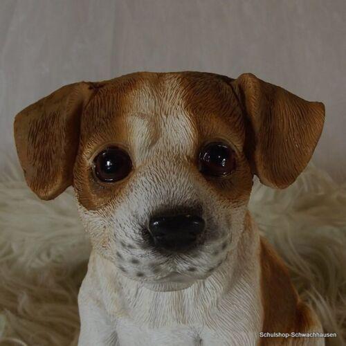 Gartenfigur Hund Jack Russel Welpe 3253 braun//weiss Haus Garten lebensecht Figur