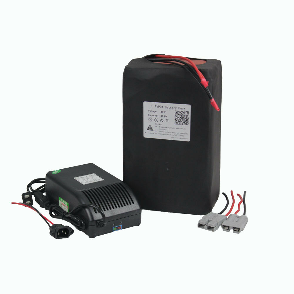 36V Volt 30Ah EBIke Battery Lithium LiFePO4 for  1000W motor with 5A Charger  up to 50% off