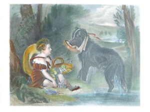 Incisione Colori The Friends Dopo Sir Edwin Landseer, London Virtue 19esimo