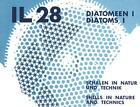 Diatomeen 1 - Schalen in Natur und Technik von Johann G. Helmcke (1984, Taschenbuch)