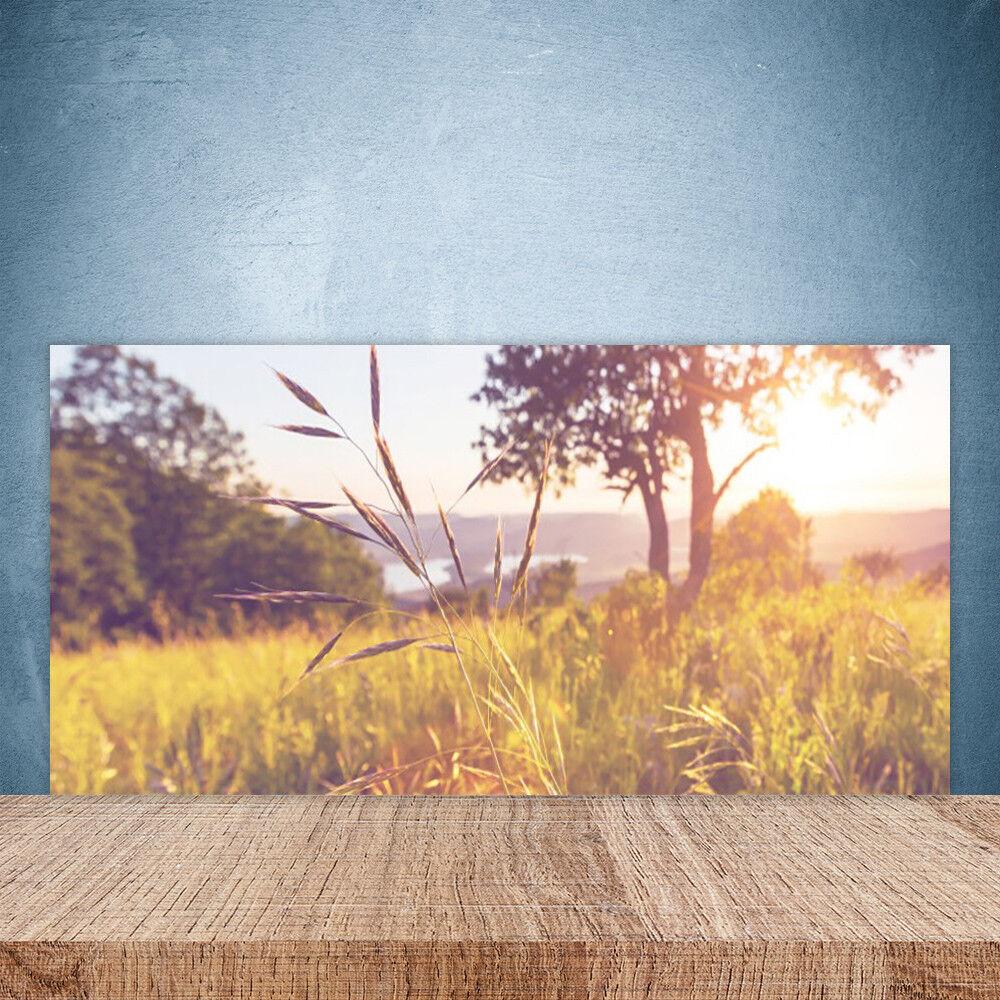 Crédence de cuisine en verre Panneau Paroi 100x50 Nature Prairie Herbe Arbre