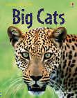 Big Cats by Usborne Publishing Ltd (Hardback, 2008)