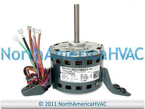 Oem Ge Genteq Goodman Furnace Blower Motor 13 Hp 208230v. Is Loading Oemgegenteqgoodmanfurnaceblowermotor1. Wiring. 5kcp39gg Capacitors Wire Diagram At Scoala.co