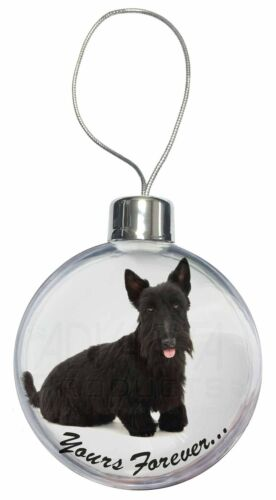 Scottie Dog /'Yours Forever/' Christmas Tree Bauble Decoration Gift AD-ST4CB