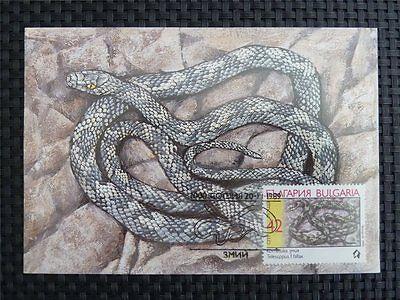 Bulgarien Mk Schlange Snake Maximumkarte Carte Maximum Card Mc Cm C2512
