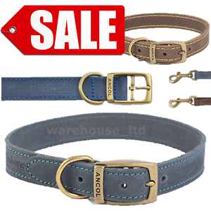 Ancol-Dog-Collar-Timberwolf-Leather-Puppy-Collar-Sable-Brown-Blue