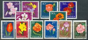 Polen Briefmarken 1964 Gartenblumen Mi.Nr.1541-1552 - <span itemprop=availableAtOrFrom>Forst (Lausitz), Deutschland</span> - Vollständige Widerrufsbelehrung Widerrufsbelehrung & Muster-Widerrufsformular Verbrauchern steht ein Widerrufsrecht nach folgender Maßgabe zu, wobei Verbraucher jede natürliche Pe - Forst (Lausitz), Deutschland