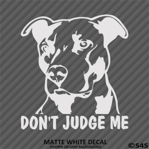 Don/'t Judge Me Pitbull Vinyl Decal Sticker Puppy Dog Rescue Choose Color