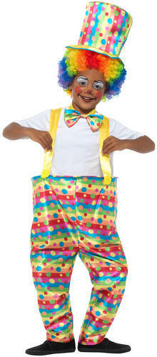 Clown Wig Boys Fancy Dress Carnival Circus Funny Rainbow Childs Kids Costume