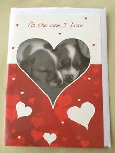 ❤️ Valentines Day Card ❤️  Sleeping Puppy's ❤️ New & Sealed