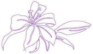 Continuous Line Lilies 10 Machine Embroidery Designs Cd In 9 Sizes