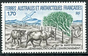 TIMBRE-T-A-A-F-TERRES-AUSTRALES-NEUF-N-149-FAUNE-BETAIL-ET-OISEAUX