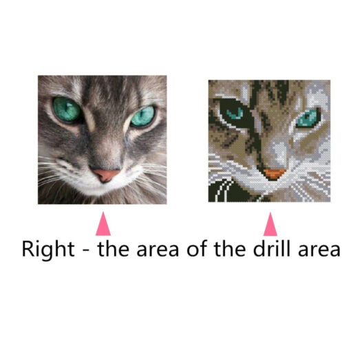 FM/_ EE/_ LK/_ Cat Eyes 5D Diamond DIY Painting Craft Kit Home Wall Hanging Decor G