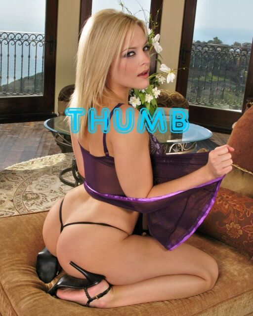 Alexis Texas 10x8 Inch Photograph 003 In Purple Babydoll Neglegee