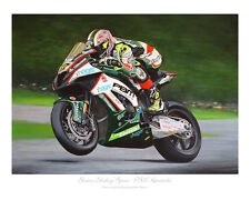 Shane 'Shakey' Byrne - PBM Kawasaki 2015 - BSB Limited Edition Art Print of 50