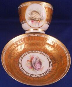 Antique-19tC-English-Porcelain-Seashell-Scene-Cup-amp-Saucer-Porzellan-Tasse-Shell