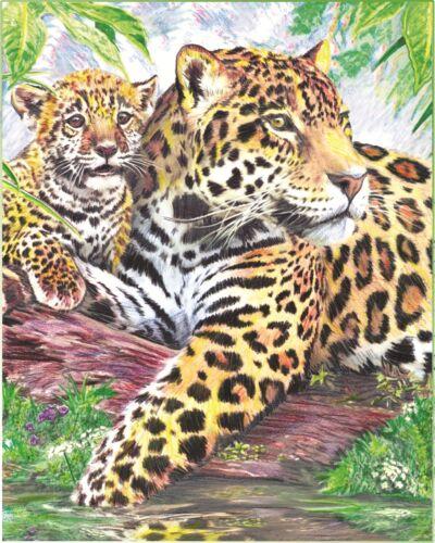 Malen nach Zahlen mit Buntstifte Jaguare am Wasser