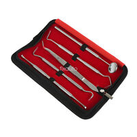 Teeth Cleaning Tools Dental Hygiene Professional Kit 5 Picks Gum Tooth Cleaner
