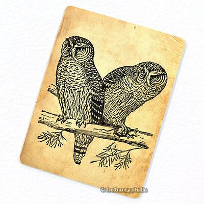 Owls #2 Deco Magnet Decorative Fridge Décor Refrigerator Birds of Prey Gift