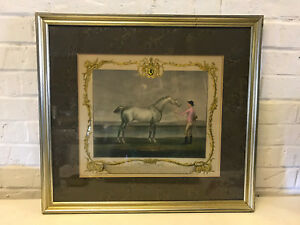 Antique-18th-Century-Richard-Houston-Engraving-Horse-Print-Portraiture-Lamprey