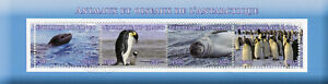 Congo-2017-CTO-Animali-Selvatici-delle-foche-antartiche-PINGUINI-4v-M-S-birds-stamps