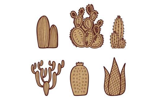 Picture-Scrapbook-caja # Cact 004 = 80 mm 6 plantas de cactus Grabado Mdf espacios en blanco
