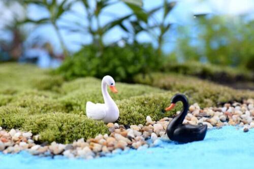 Dollhouse Miniature Resin Bonsai Garden Fairy Craft Micro Landscape Decor