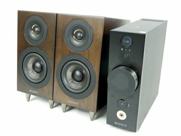 SONY CAS-1 compact audio hi-res separate type blueetooth