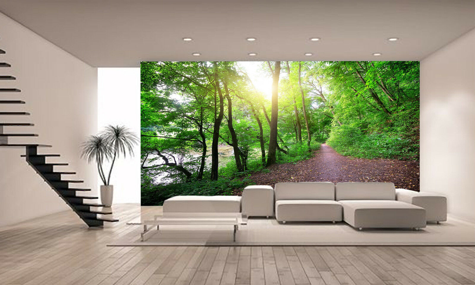 Path Near a Forest Lake Wall Mural Photo Wallpaper GIANT DECOR Paper Poster