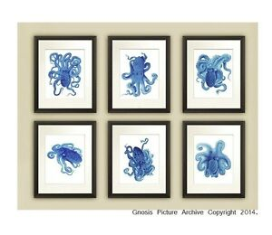 Blue Octopus Prints Set Of 6 Unframed Blue Beach Decor Bathroom Wall Art Ebay