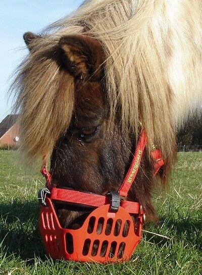 Grünguard Maulkorb rot f. rehegefährdete Pferd,Pony,Hufrehe,Weide pferdo24