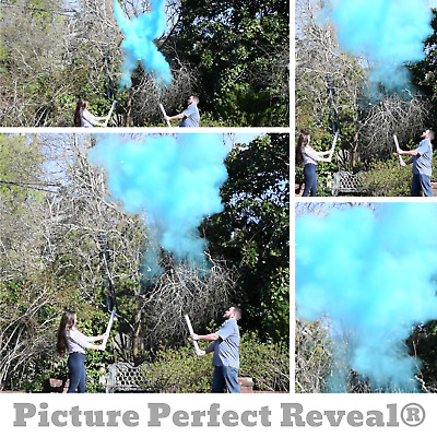 24 POWDER CANNONS Powder Cannon Picture Perfect Reveal\u00ae Gender Reveal Powder| Gender Reveal Idea Gender Reveal Smoke Ships TODAY!