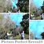 24-034-Gender-Reveal-POWDER-girl-SHE-pink-party-popper-cannon-reveal thumbnail 4