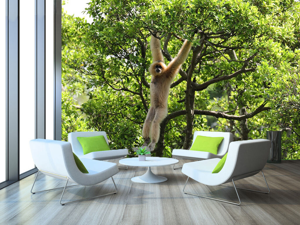 3D Naughty Monkey 72 WallPaper Murals Wall Print Decal Wall Deco AJ WALLPAPER