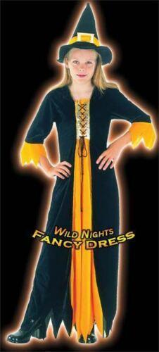 HALLOWEEN FANCY DRESS FUN GIRLS GOTHIC WITCH SM AGE 3-5