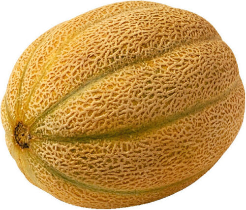 50 Graines NT de MELON Cantaloup Sucrée Orange Foncé Très Juteuse